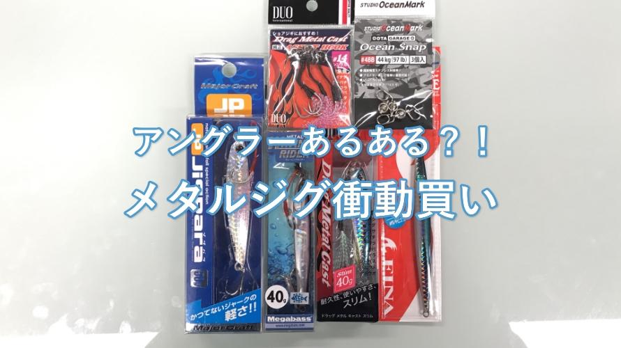 シーバス戦リベンジ準備!メタルジグめちゃくちゃ買っちゃった編 福井・越前海岸の釣果報告