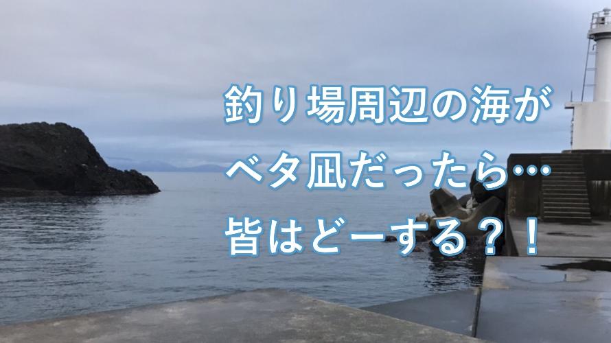 ベタ凪の日は釣れないの?大潮の日は釣れないの?真冬の越前海岸での釣果報告
